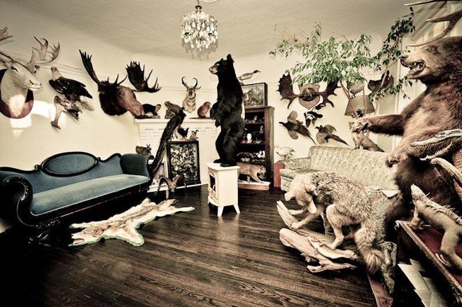 Morgan Mavis Contemporary Zoological Conservatory