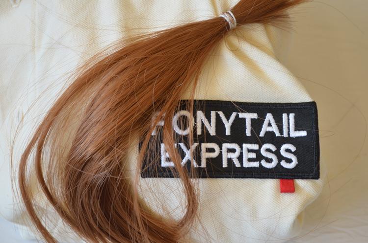 ponytail11